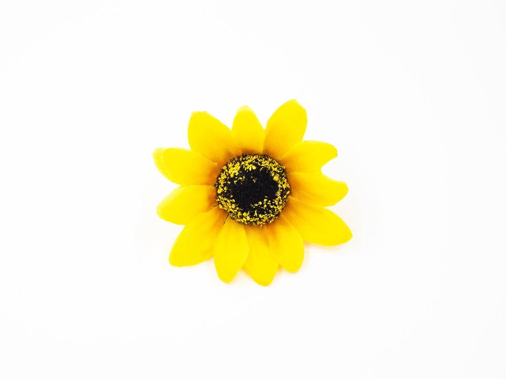 Slunečnice 003