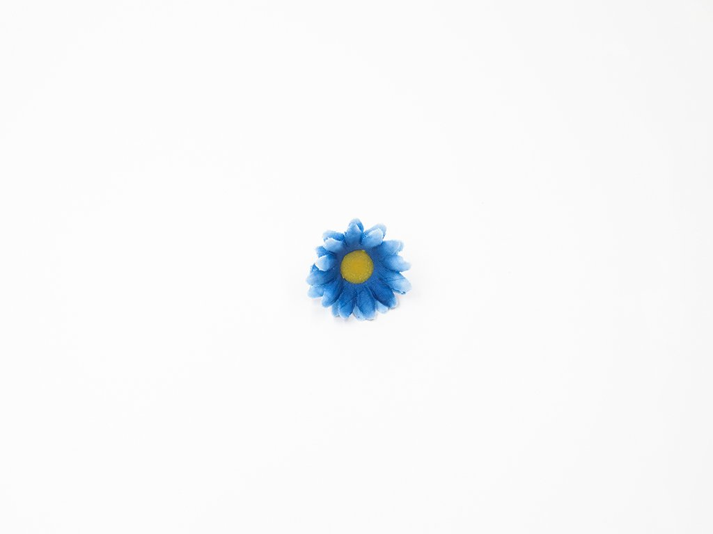 Kopretina 002 modrá