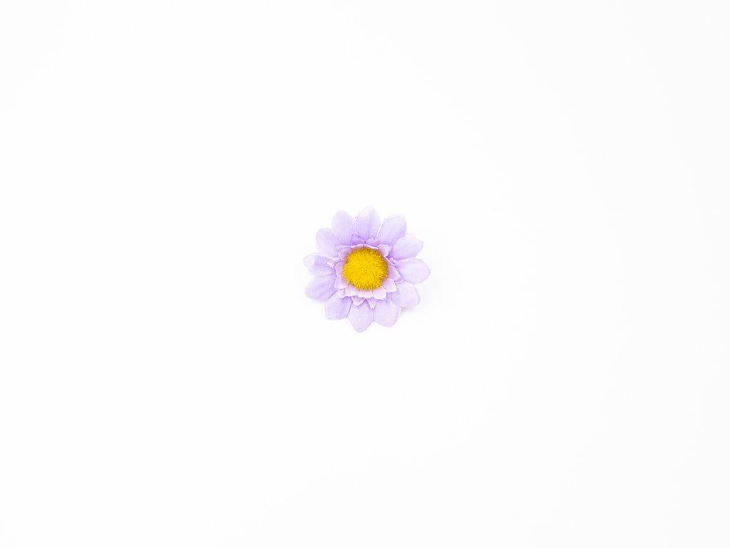 Kopretina 003 fialková