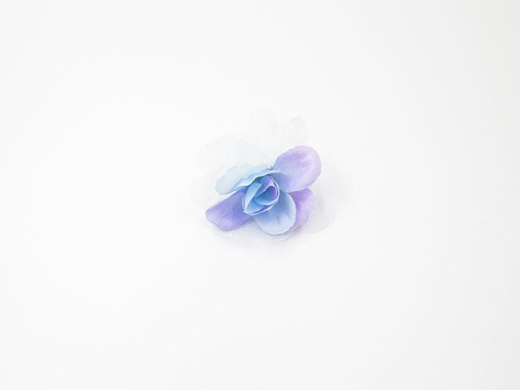 Růže 012 modrá