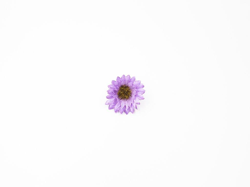 Kopretina 004 fialková