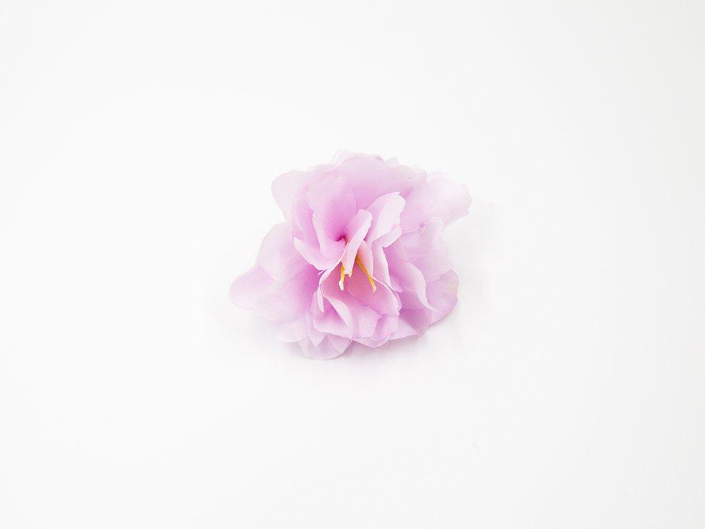 Kamélie 003 fialkovo růžová