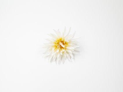 Chryzantéma 003 bílá