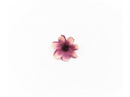 Čekanka 001 broskvovo fialová