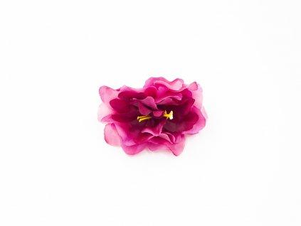 Kamélie 003 tmavě růžová