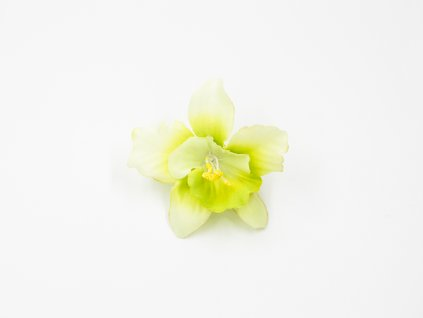Orchidej 001 zelenkavá