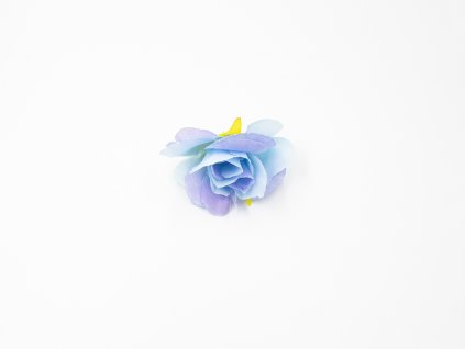 Růže 016 modrá