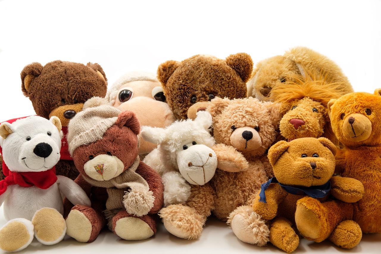 Největší sbírka plyšových medvídků