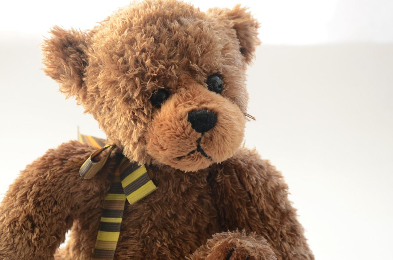 bear-2238408_1280