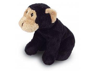 MS999 Chimp