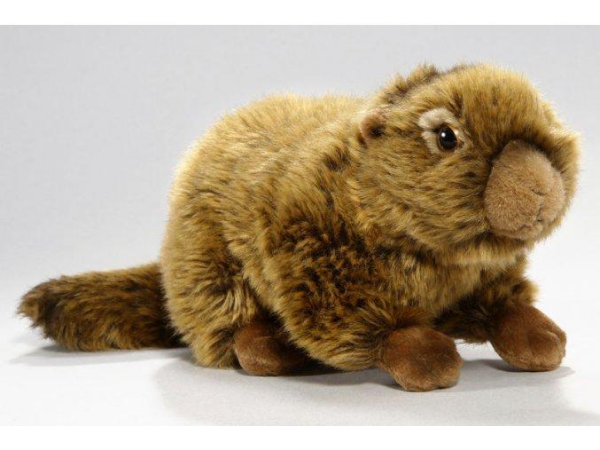 Plyšový svišť 25 cm - plyšové hračky