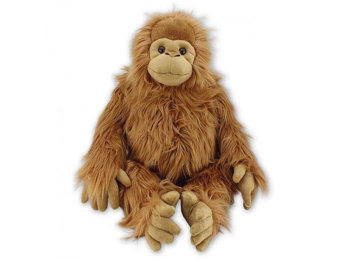 2B2232A0 2E43 4D59 B003 96452951CC5F orangutan plys ark458