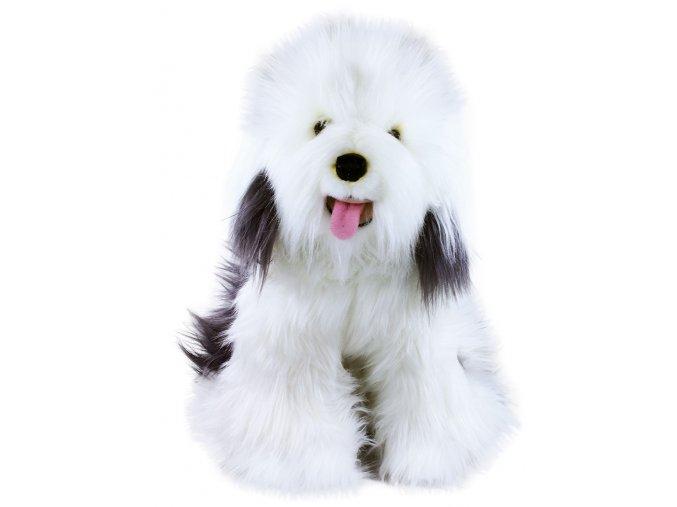 Plyšový pes Bobtail 30 cm - plyšové hračky