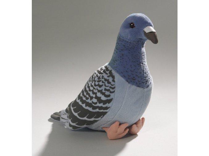 Plyšový holub 20 cm - plyšové hračky