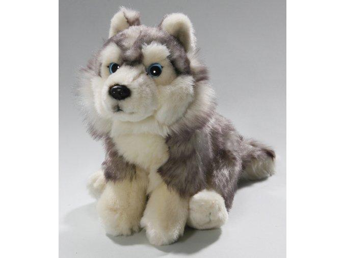 Plyšový pes husky sedící 25 cm - plyšové hračky
