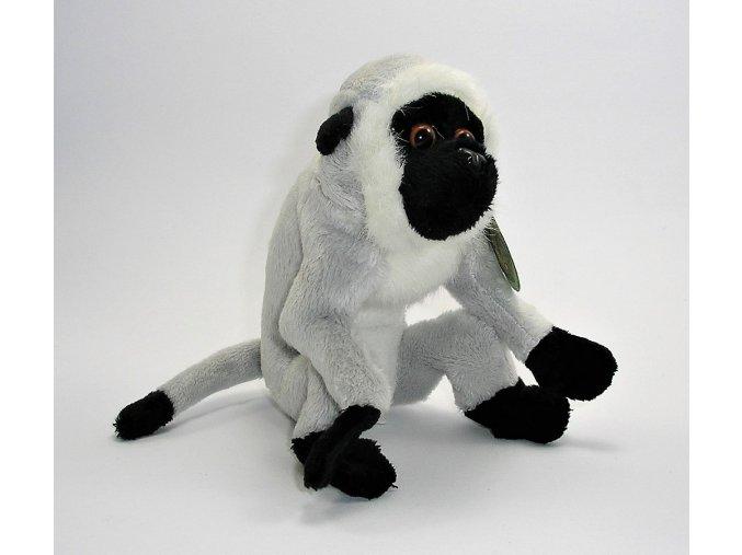 Plyšová opice 17cm - plyšové hračky