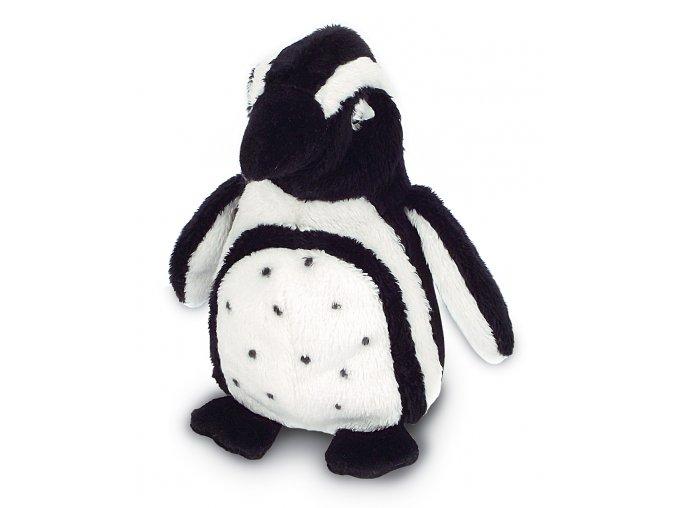MS999 PenguinHumboldt