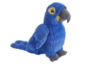 Plyšový papoušek 20 cm - plyšové hračky
