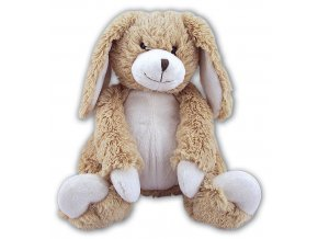 MS888 Rabbit