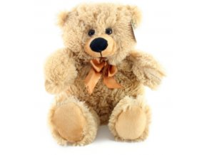 medvěd4