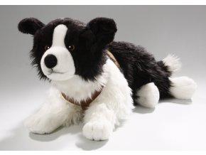 Plyšový pes Border kolie 70 cm - plyšové hračky