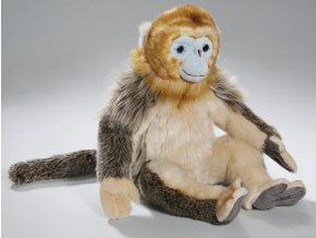 Plyšová opice 30 cm - plyšové hračky