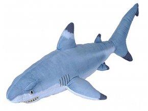 žralok3