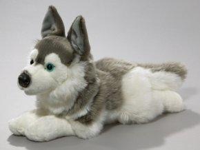 Plyšový pes husky 34 cm - plyšové hračky