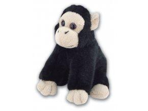K111 Chimp
