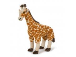 Plyšová žirafa 40 cm - plyšové hračky