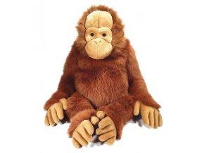 BC6E6227 EB35 4763 BB6C 504E44B11433 orangutan plys 100cm arid224