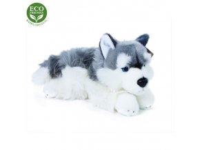 Plyšový pes husky 30 cm - plyšové hračky