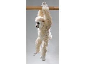 Plyšová opice gibon 43 cm - plyšové hračky