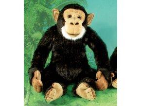 Plyšový šimpanz 34cm - plyšové hračky