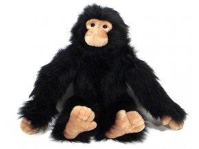 Plyšový šimpanz 50cm - plyšové hračky