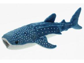 Plyšový žralok velrybí 54cm - plyšové hračky