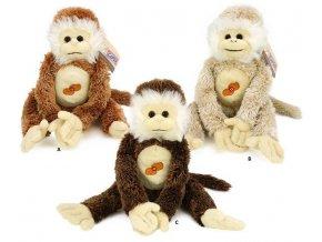 Plyšová opice se zvukem 38 cm - plyšové hračky