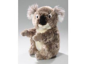 Plyšová koala 21 cm - plyšové hračky