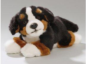 Plyšový Bernský pes 25 cm - plyšové hračky