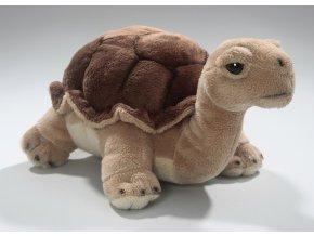 Plyšová želva 26 cm - plyšové hračky