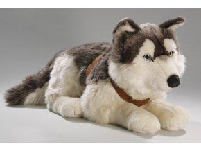 Plyšový pes husky 60 cm - plyšové hračky