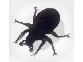 Plyšový brouk hnědý 25 cm - plyšové hračky