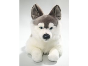 Plyšový pes husky 40 cm - plyšové hračky