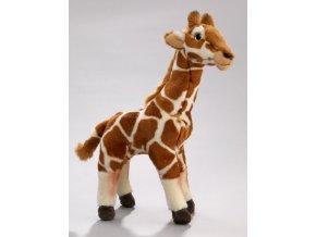 Plyšová žirafa 30 cm - plyšové hračky