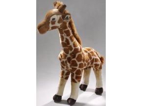 Plyšová žirafa 55 cm - plyšové hračky
