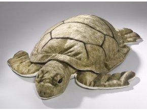 Plyšová želva 55 cm - plyšové hračky