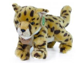 5EC56019 CD51 4D1F A51C 717F47ABD75E gepard plys pj991739