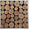 Dřevěný obklad na stěnu-  Třešeň 2 ks v balení PSDM_076X038X03_NCK2