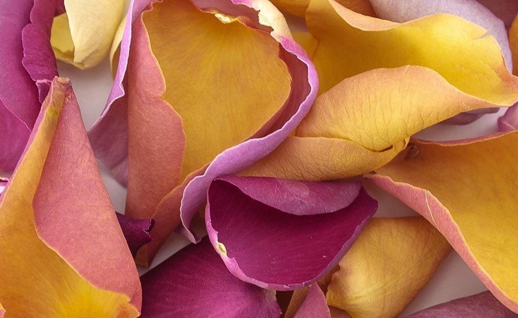 jedle-kvety-ruzi-mix-5