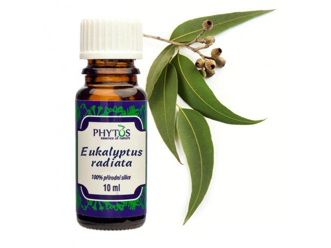 eukalyptus radiata olej
